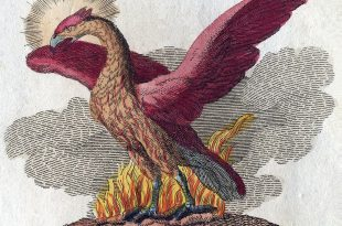 Phénix, oiseau de feu